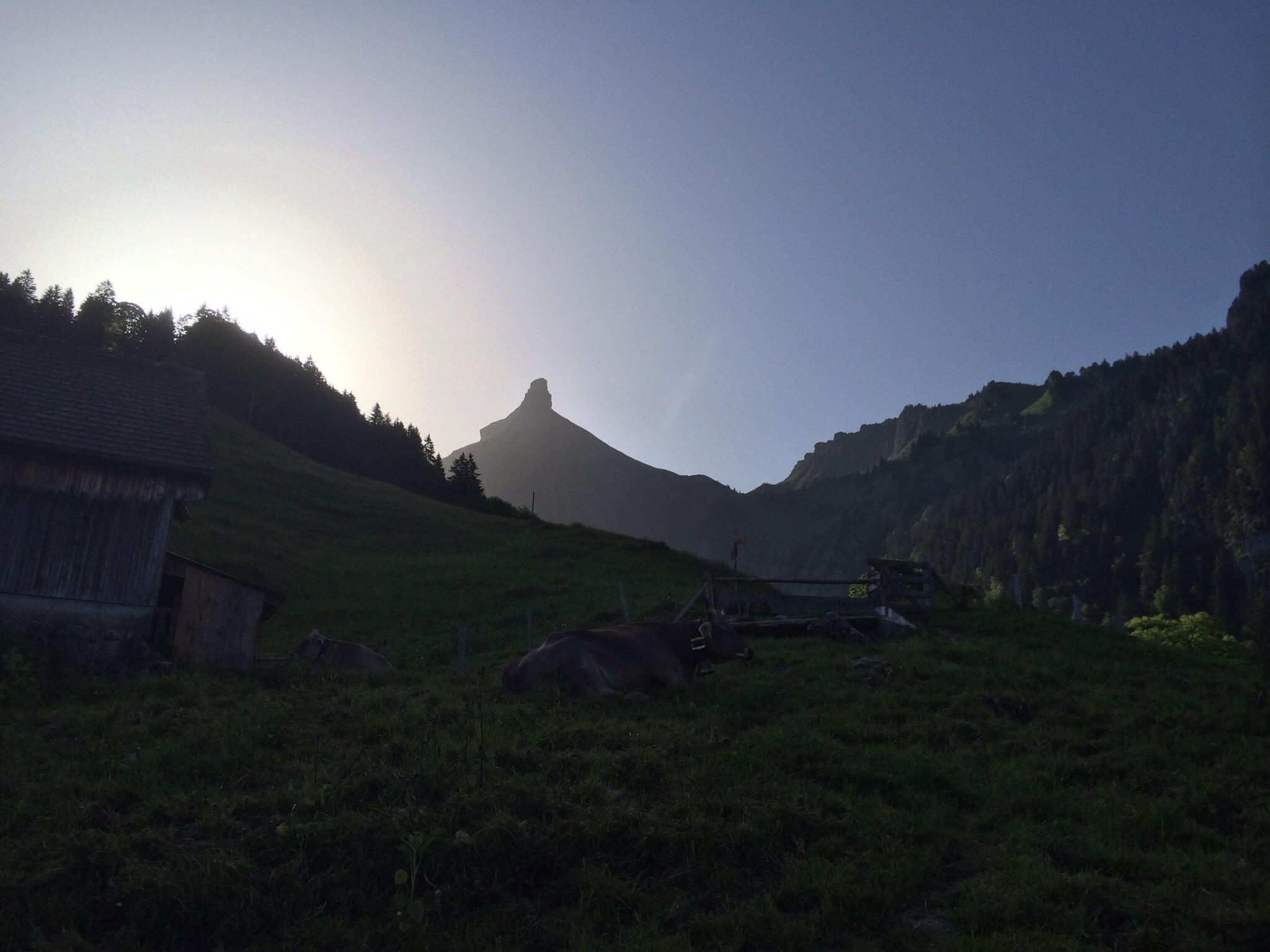 Der Zindlenspitz im Gegenlicht der aufgehenden Sonne